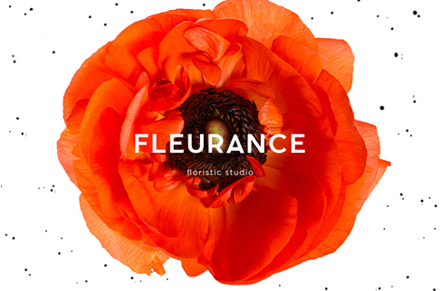 Naming and logo design for Fleurance