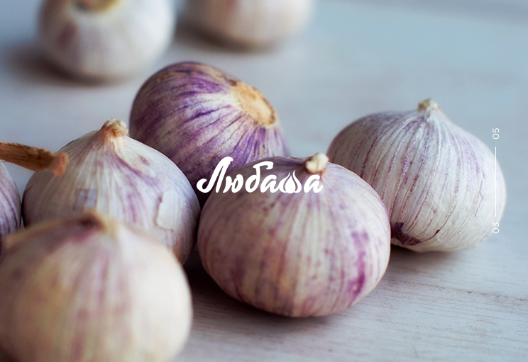 logo design garlic