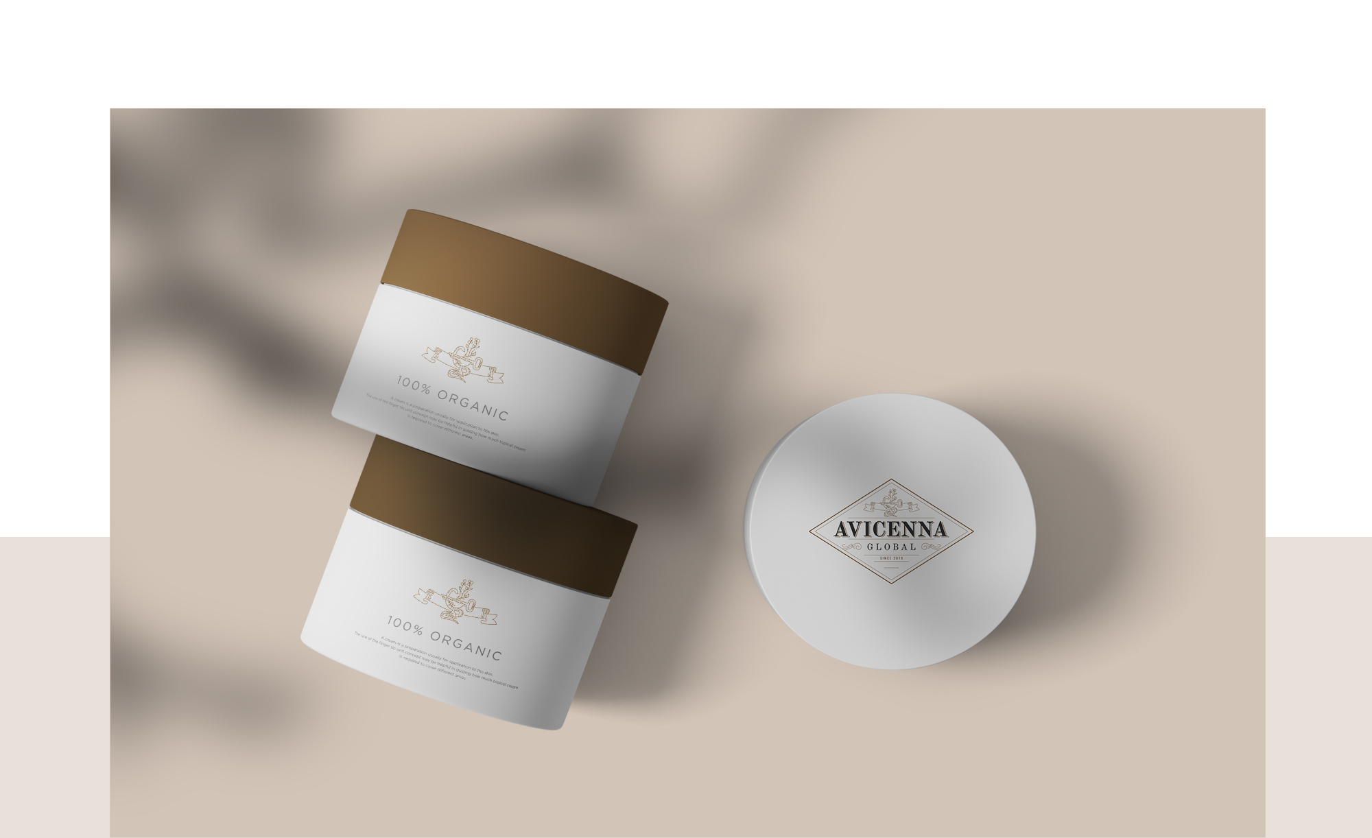 Avicenna Global branding design