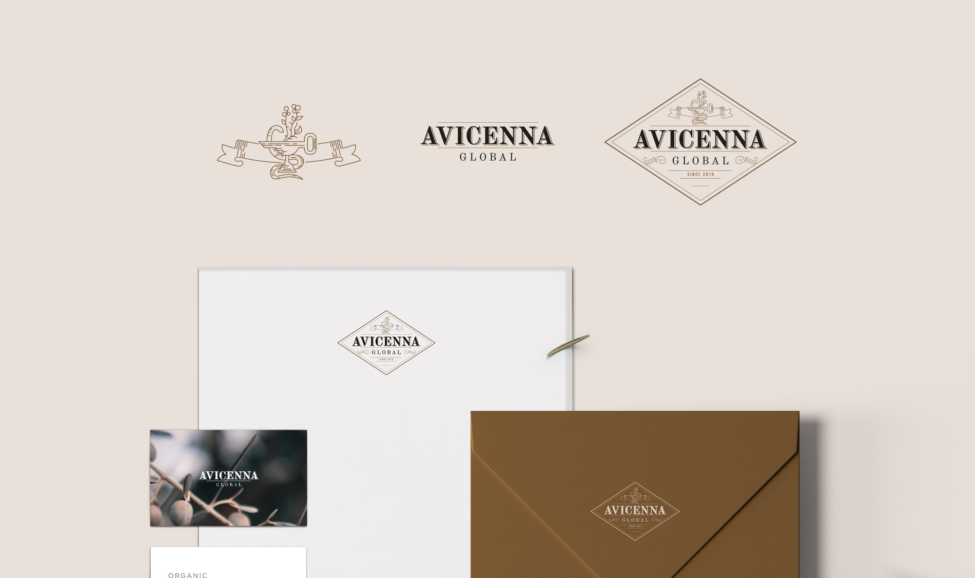 Avicenna Global logo design